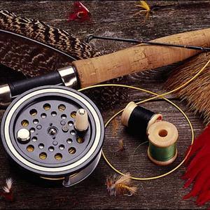 Охотничьи и рыболовные магазины Тейково