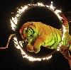 Цирки в Тейково